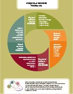 4_Indigenous_Wellness_Framework